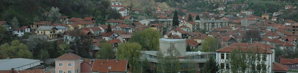 КИЦ Босилеград
